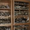 Deposito collezioni ornitologiche