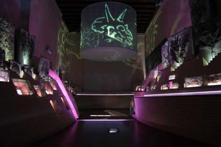 incontrare la scienza al museo di storia naturale