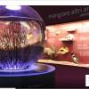 msn-digitalexhibition-museo-delle-emozioni2